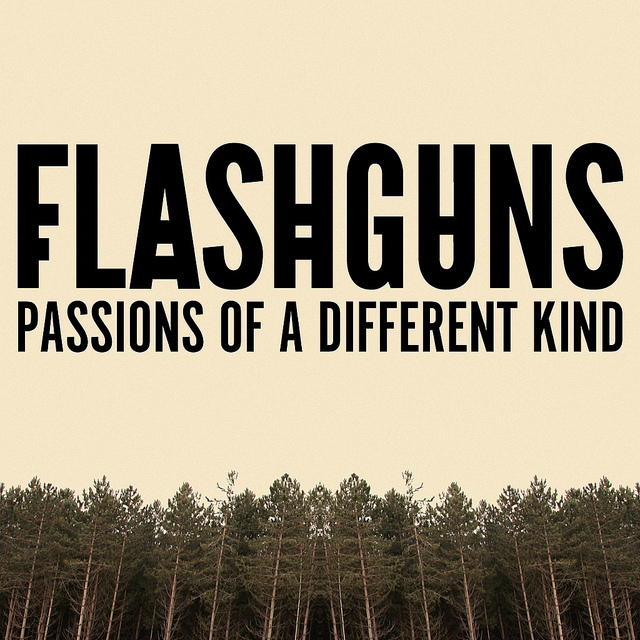 Flashguns - Passions Of A Different Kind