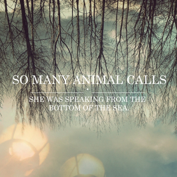 So Many Animal Calls- She Was Speaking From The Bottom Of The Sea cover artwork